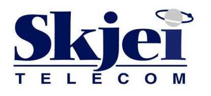 Skjei Telecom